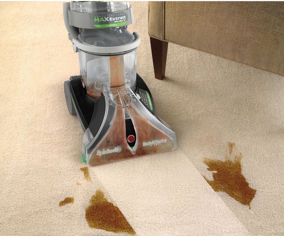 Hoover MaxExtract Dual V Carpet Cleaner in action